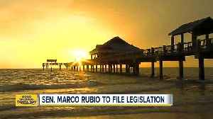 News video: Sen. Rubio: Keep daylight saving time year round for the US