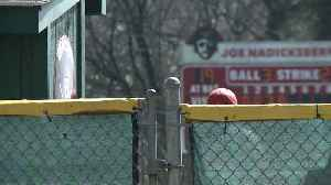 News video: College Baseball Player to Apologize After Using Racial Slur During Game