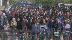 News video: Coral Springs Students Join In Walkout Wednesday