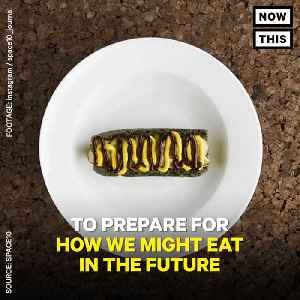News video: IKEA Is Developing Food Made From Bugs, Algae, And Lab Grown Meat