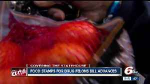News video: Food stamps for drug felons bill heads to Governor's desk for approval