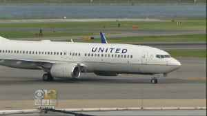 News video: United To Issue Special Pet Carrier Tags After Dog's Death