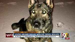 News video: United Airlines dealing with pet travel mishaps