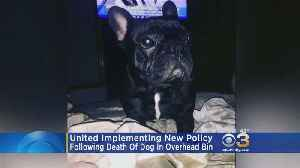 News video: United Implementing New Policy After Death Of Dog In Overhead Bin