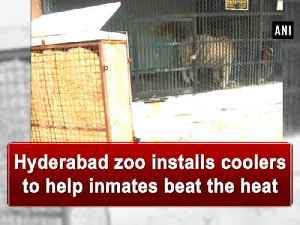 News video: Hyderabad zoo installs coolers to help inmates beat the heat