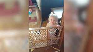 "News video: ""A Baby Girl Argues with Her Mother About Climbing Over A Baby Gate"""