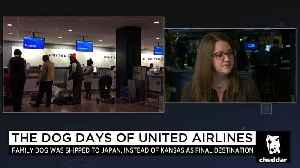 News video: Will Passengers Actually Boycott United Airlines?