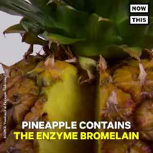 News video: Here's The Scientific Reason Pineapple Burns Your Mouth
