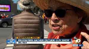 News video: Protestors usher in Del Mar Gun Show