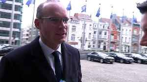News video: Irish Foreign Minister: Steady progress being made on Brexit