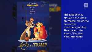 News video: 'Lady and the Tramp' to Get Live-Action Remake