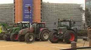 News video: Farmers ride into Brussels to protest subsidy reforms