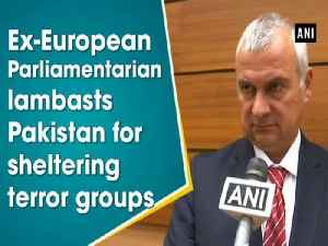 News video: Ex-European Parliamentarian lambasts Pakistan for sheltering terror groups