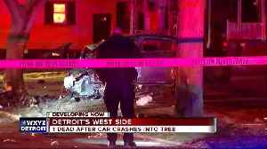 News video: Driver killed when car crashes into tree on Detroit's west side