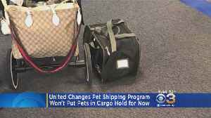 News video: United Airlines Changes Pet Shipping Program
