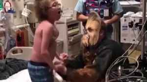 News video: Cardiologist dressed as Chewbacca delivers heartwarming news to teen