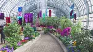 News video: Mobile Weather Lab: Garfield Park Conservatory