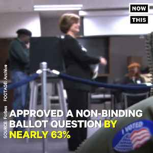 News video: Illinois' Cook County Approves Cannabis Legalization By 63%