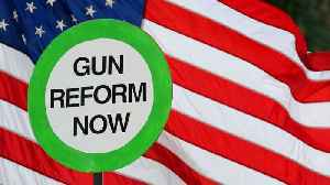 News video: New Poll Reveals What Americans Want When It Comes To Gun Laws