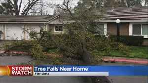 News video: Tree Falls Dangerously Close To Home In Fair Oaks