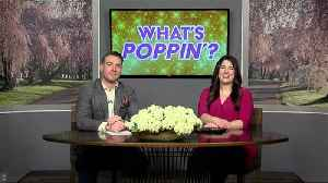 News video: What's Poppin' 3-21-18