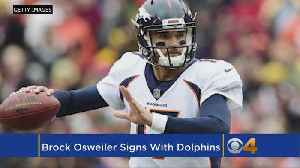 News video: Dolphins Sign Brock Osweiler