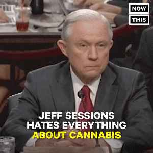 News video: #JeffSesh Are Rolling Papers With Jeff Sessions' Face On Them