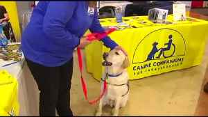 News video: VIDEO: Community Day at Lehigh Valley Auto Show