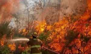 News video: County-line brush fire in Martin, St. Lucie County forces some homeowners to evacuate