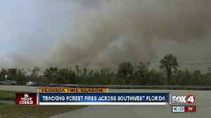 News video: Tracking Forest Fires Across Southwest Florida