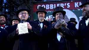 News video: Paw & Order: Punxsutawney Phil Threatened for Lying About Weather Forecast