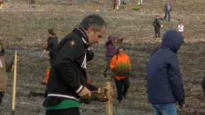News video: Hundreds of volunteers plant trees to replace Portugal's burned forests