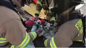 News video: Firefighters use tiniest oxygen mask in this cat rescue