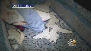 News video: Demanding Answer From NYCHA Following Ceiling Collapse