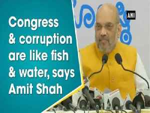 News video: Congress & corruption are like fish & water, says Amit Shah