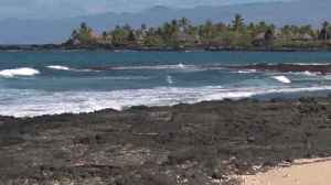 News video: Paddleboarder fighting for his life after shark attack in Hawaii