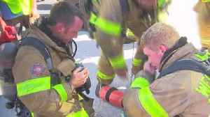 News video: Cat receives oxygen after being rescued from house fire