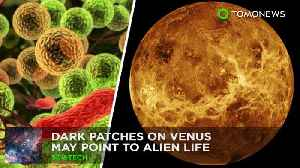 News video: Dark patches on Venus could be signs of microbial life