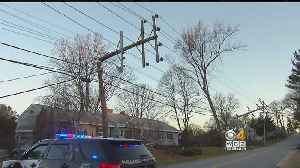 News video: Strong Winds Bring Down Trees In Tewksbury