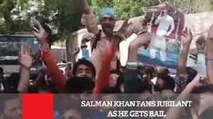 News video: Salman Khan Fans Jubilant As He Gets Bail