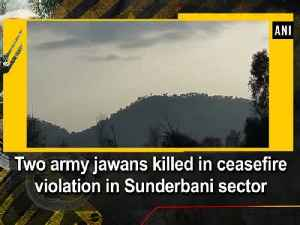 News video: Two army jawans killed in ceasefire violation in Sunderbani sector