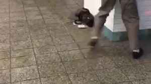 News video: Old man dances in subway station