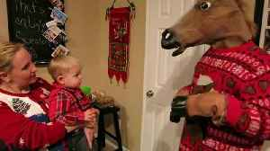 """News video: """"Tot Boy Meets His Christmas Nightmare: A Man With A Horse Head"""""""