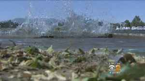 News video: Strong Winds Rip Through SoCal