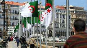 News video: Algerian flags fly half-mast as the country mourns the plane disaster