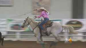 News video: Colorado High School Rodeo Riding High: 'Keeps You Motivated'