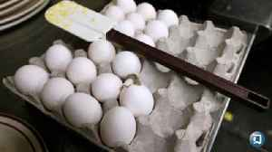 News video: Over 206 Million Eggs Recalled After Salmonella Reports