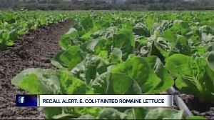 News video: Romaine lettuce to blame for E. coli outbreak in 11 states, CDC reports