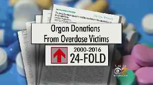 News video: Opioid Deaths Helping Meet Need For Organ Donations