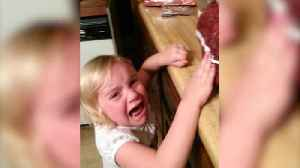 "News video: ""Not Everyone Loves Thanksgiving: Adorable Little Girl Cries Over Dead Turkey"""